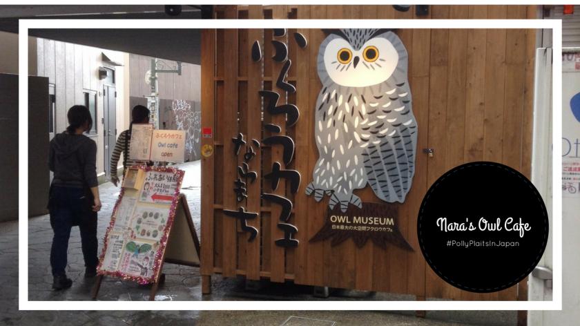 owl cafe thumbnail